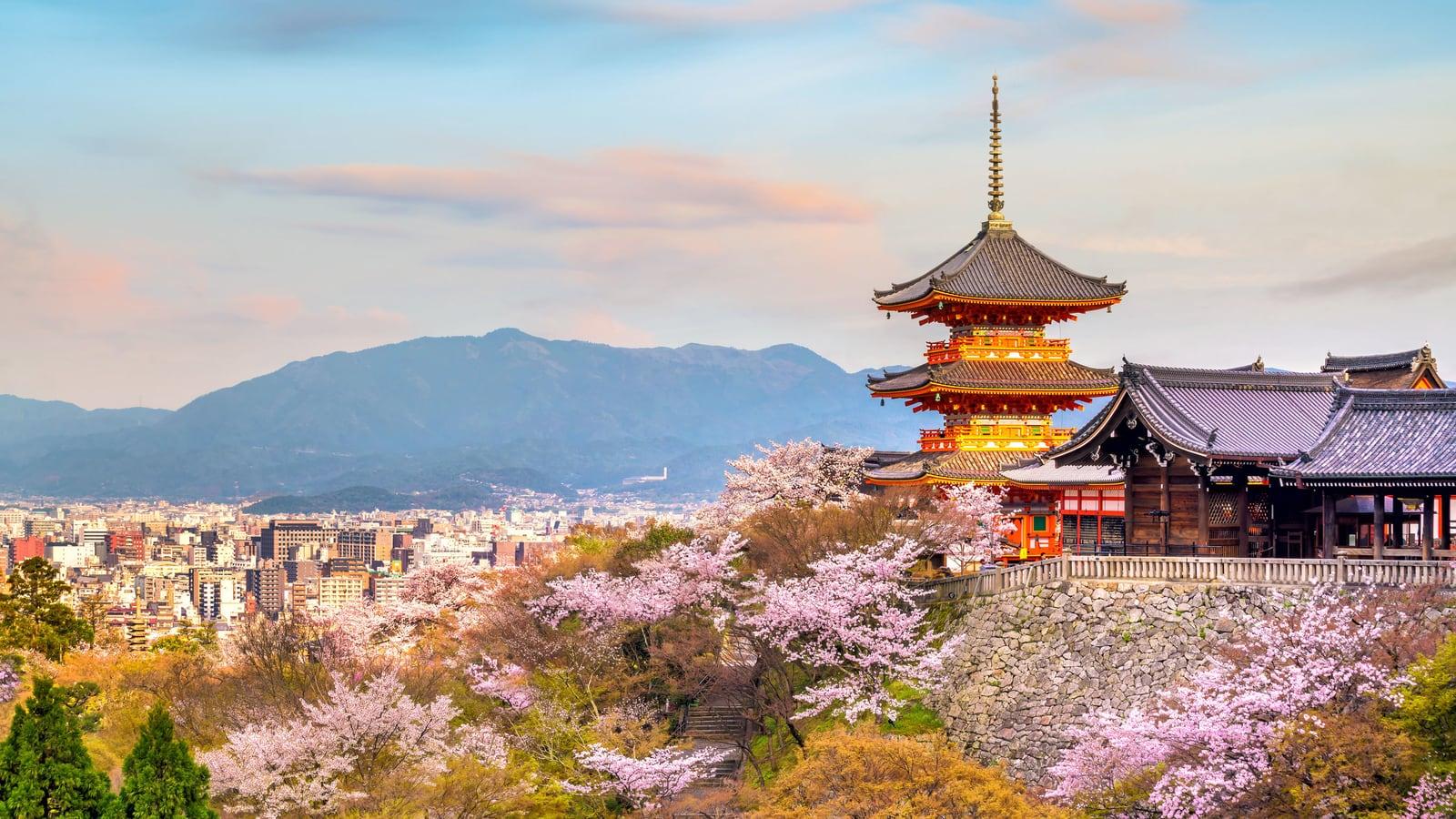 Window to the world: Kyoto