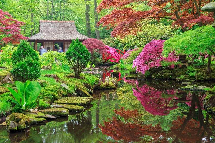 Japanese Pond Garden